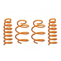 ARK Performance Kia Stinger All Models GT-F Springs (17+)