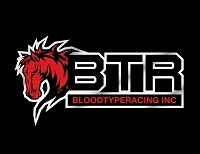 BTR Logo with Horse Decal